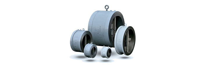 Dual Plate Wafer Check Valves
